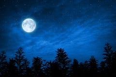 Foresta in siluetta con il cielo stellato, elementi di questa immagine AR Immagini Stock