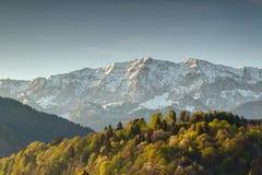 Foresta soleggiata sotto la Baviera nevosa Germania della parete di Wettersteinwand fotografie stock