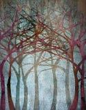 foresta spettrale Immagine Stock