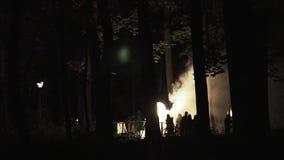 Foresta su fuoco alla notte stock footage