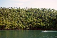 Foresta tropicale in Cayo Levantado, Repubblica dominicana Immagine Stock