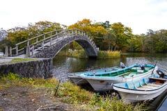 Foresta variopinta alla riva del lago in autunno fotografia stock libera da diritti