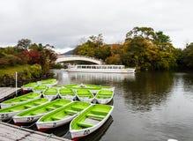 Foresta variopinta alla riva del lago in autunno fotografie stock libere da diritti