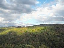 Foresta verde all'alta montagna il giorno nuvoloso Fotografia Stock