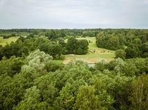 foresta verde senza fine dall'immagine aerea del fuco di estate fotografia stock