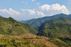 Foresta verde sull'alta montagna nel Laos Fotografia Stock Libera da Diritti