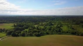 Foresta vicino all'azienda agricola dello stato di Rudakovo archivi video