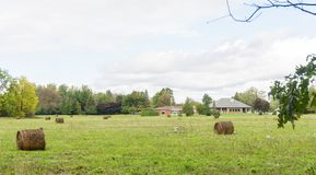 Foresta vivente dell'azienda agricola della casa di zona rurale dell'erba del prato inglese della balla di fieno fotografia stock