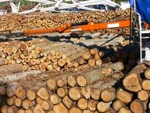 forestal продукция Стоковое Изображение RF