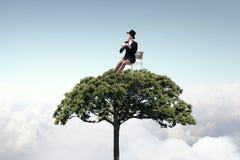 Forestation как ecologyy решение Мультимедиа Стоковая Фотография