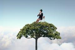Forestation как ecologyy решение Мультимедиа Стоковые Фотографии RF
