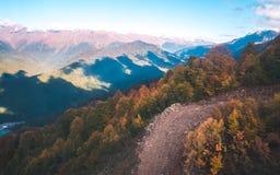 Foreste di autunno in montagne fotografia stock libera da diritti