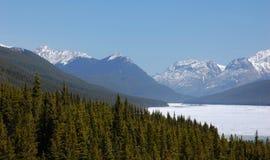 Foreste e montagne Fotografie Stock Libere da Diritti