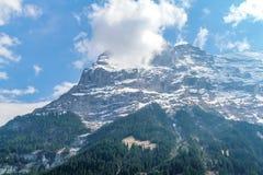 Foreste e montagne in alpi svizzere Immagini Stock