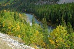 foreste River Valley Immagine Stock Libera da Diritti
