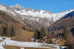 Foreste sempreverdi nella valle coperta di prima neve Il paesaggio delle dolomia in Fotografie Stock Libere da Diritti
