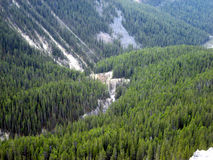 Forested Alpine Valley Royalty Free Stock Images