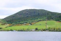 Forested berg som förbiser Loch Ness Royaltyfria Foton
