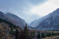 Forested berglutning fotografering för bildbyråer