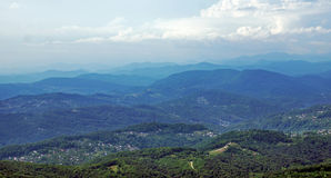 Forested Caucasian mountains Stock Photos