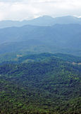 Forested Caucasian mountains Royalty Free Stock Images