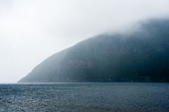 Forested cliff meeting water in wet fog Royalty Free Stock Images