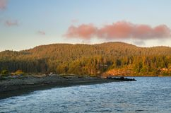 Beautiful Sunset over the Forested Coast of Vancouver Island in Summer. Forested Coastline at Sunset with Houses among the Trees. A Deserted Pebble Beach is in Royalty Free Stock Photos