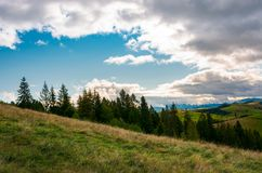 Forested grassy hills on a cloudy day. Lovely landscape of Carpathian mountains in autumn Stock Photo