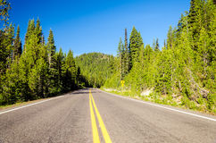 Forested Highway Royalty Free Stock Images