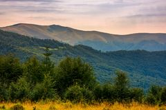 Forested hills of Carpathian mountains in summer. Apetska mountain in the distance Royalty Free Stock Photography