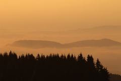 Forested hills in early morning mist Royalty Free Stock Photography