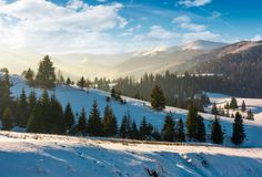 Forested hills of mountain ridge in winter Royalty Free Stock Photo