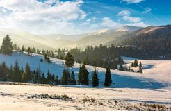 Forested hills of mountain ridge in winter Royalty Free Stock Image