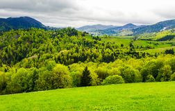Forested hills of mountainous rural area. Beautiful springtime countryside landscape Royalty Free Stock Photo