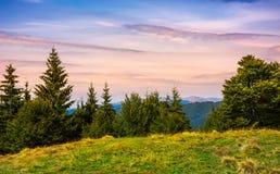 Forested hills over the Brustury valley at dusk. Gorgeous mountainous landscape, TransCarpathia, Ukraine Stock Image
