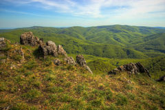 Forested Hills Valley Royalty Free Stock Images