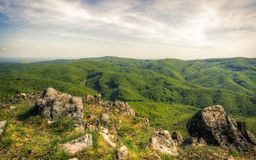 Forested Hills Valley Stock Photography