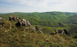 Forested Hills Valley with Rocks Stock Photo