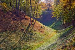 Forested hills in Viljandi Stock Photo