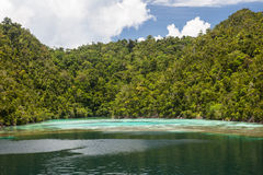 Forested Island and Coral Reef in Raja Ampat royalty free stock image
