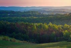 Forested kullar med ljust solljus royaltyfri foto