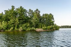 Forested Lake Island in Central Minnesota. A heavily forested small island stands in the middle of Clamshell Lake in Central Minnesota royalty free stock photo