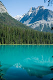 Forested landscape at Emerald Lake Royalty Free Stock Images