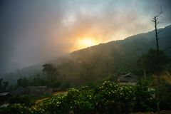 Forested mountain in low lying cloud with minority village houses, flower and faded sun.  Stock Photography