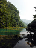Forested Mountain Reflected in Turquoise Semuc Champey Pool Royalty Free Stock Image
