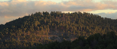 The Forested Mountain. In South Dakota, a forested mountain set on fire by the sun through near clouds scattering rays like fire over the forest below Stock Photos