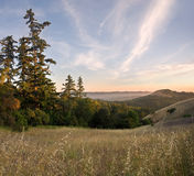 Forested Mountain Sunset in Summer Stock Photos