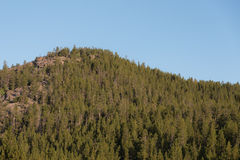 Forested Mountain Top Royalty Free Stock Photo