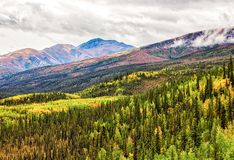 Forested Mountain Valley Stock Photo