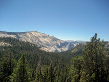 Forested Mountain Valley Royalty Free Stock Images
